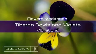 Flowers Meditation with Tibetan Bowls and Violets Vibrations
