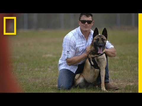 Soldier Adopts Dog That Saved His Life | National Geographic