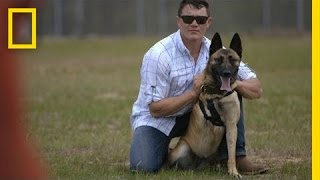 Repeat youtube video Soldier Adopts Dog That Saved His Life | National Geographic