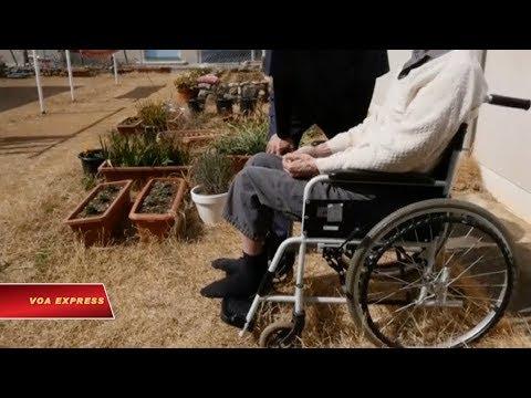 Nhật: Tù nhân được chăm sóc chu đáo khi thọ án