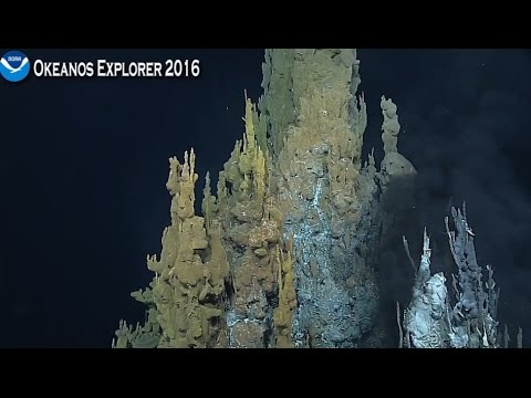 NOAA live May 01  2016 Marianas Trench hydrothermal vent field