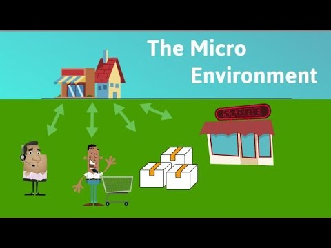 The Micro Environment
