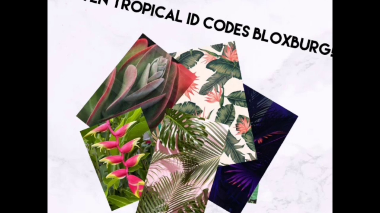 Roblox Bloxburg Tropical Decal Id S Youtube Roblox Pictures Roblox Calendar Decal Top 10 Tropical Decals Bloxburg Youtube