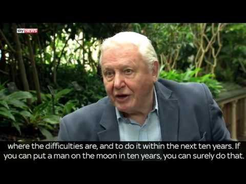 Sir David Attenborough: We Need To Create Cheap, Renewable Energy