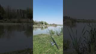 Почти Тишина На Рыбалке Приколы Fishing PRO Темур Тик Ток Shorts