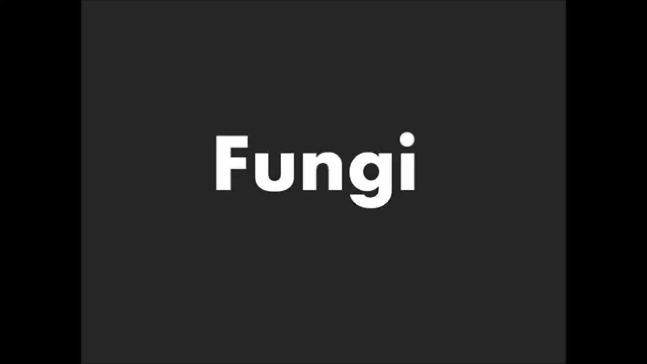 How To Pronounce Fungi Youtube