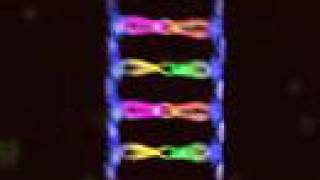 BioRap (DNA Replication and Protein Synthesis with a Beat)
