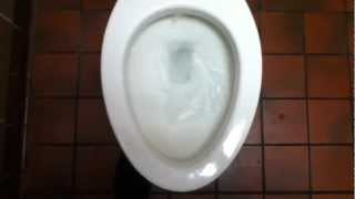 [231] 2006 AS Cadet Flowise Right Height Elongated Toilet