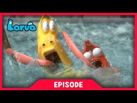 LARVA - FLOOD   Cartoon Movie   Videos For Kids   Larva Cartoon   LARVA Official