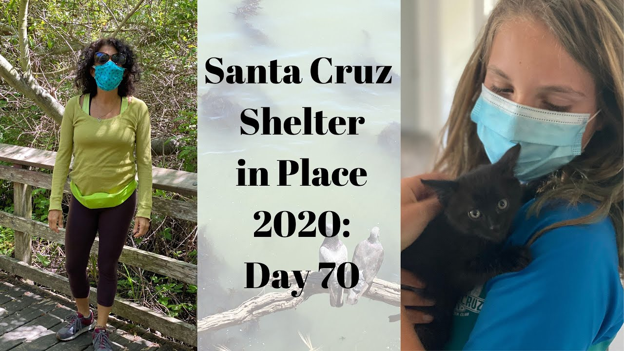 Santa Cruz Shelter in Place 2020: Day 70