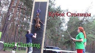 Кубок Столицы, выставка собак, часть 1 ''Wall Climbing 1''