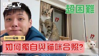 【豆漿&俊榮】公開教學 如何讓貓咪看鏡頭自拍?