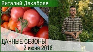 Дачные сезоны с Виталием Декабревым. 2 июня 2018