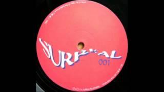 Ron Roland - Nassaur Bassed Party [Surreal, 1996]