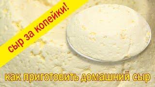 Домашний сыр Сыр в домашних условиях