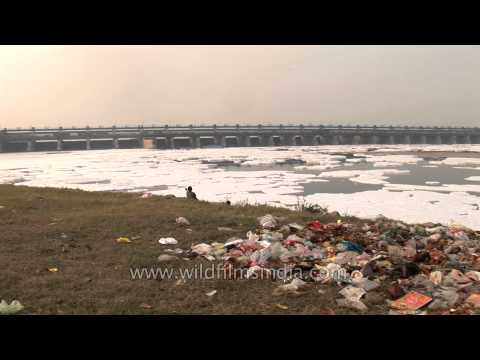 Yamuna River, polluted by industrial effluent