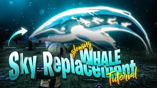 Neon Whale sky replacement Effect in Alight Motion | Android and iOS | pubg  @Barood Gaming