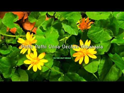 Nee En Usuravita Osathiyadi Unaku Puriyala Pop Song.. Sed Status