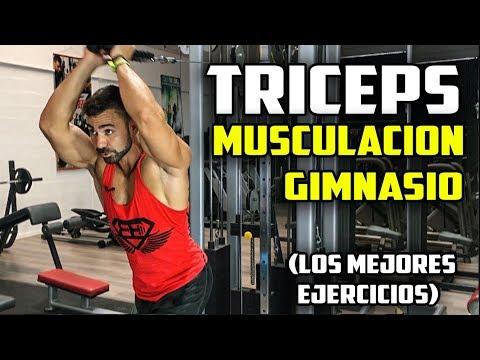 Plan de entrenamiento para triceps