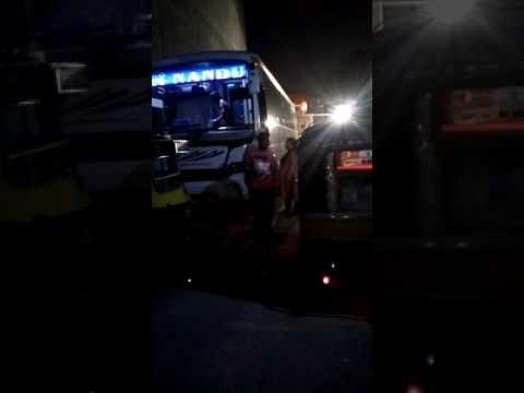Bus for udaipur Nandu travels bikaner