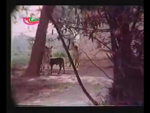 Kahe Ke Ta Sab Koi Apan(The Best Bhojpuri...