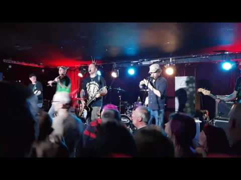 Raggle taggle gypsies from the amazing ferocious dogs @ The Ruby lounge Manchester