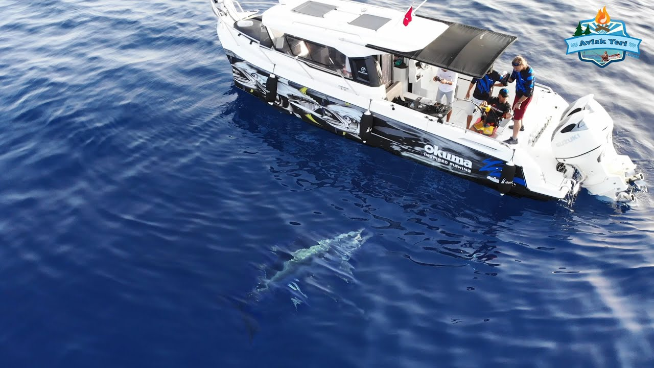 110 KİLOLUK REKOR BALIK!! DEV ORKİNOS AVLADIK!!  Big Catch Giant bluefin tuna!