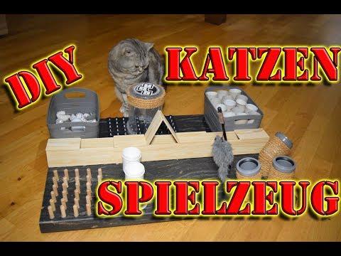 Fummelbrett für Katzen * Katzenspielzeug selber bauen* Intelligenzspielzeug für Katzen selber machen