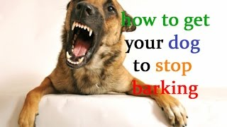 How To Get Your Dog To Stop Barking - Train Well Your Puppy