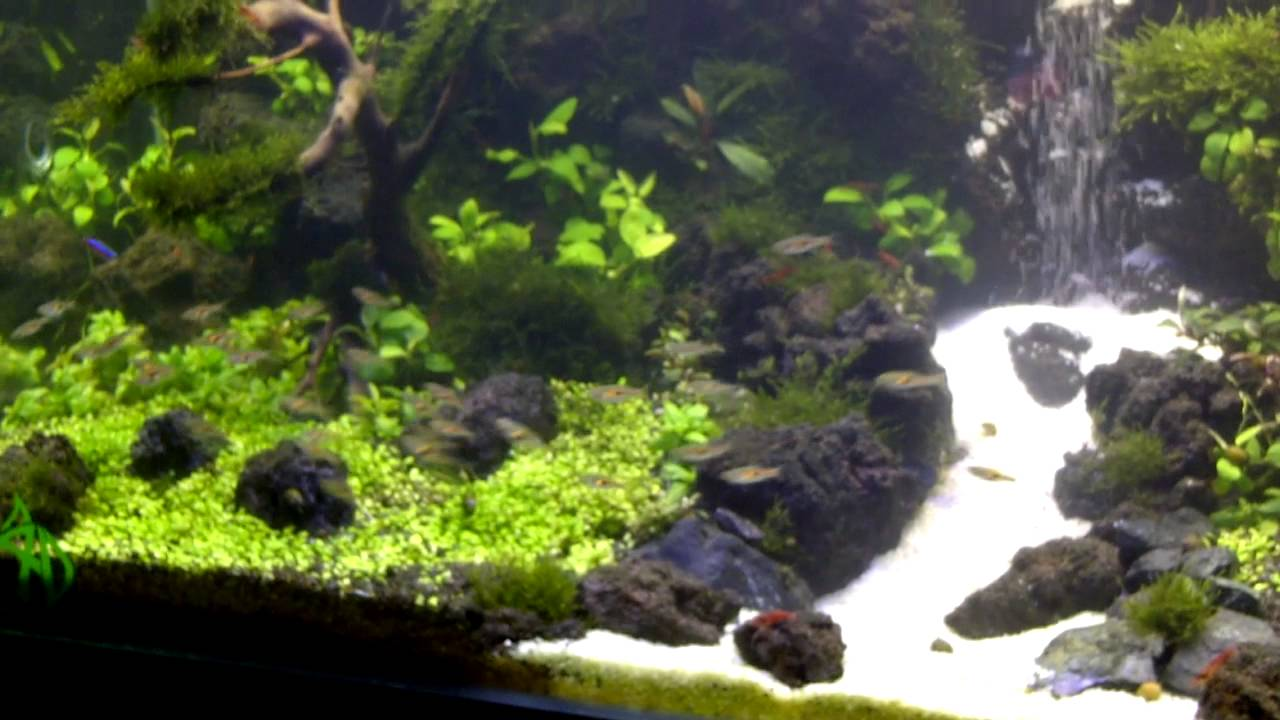 Under water waterfall aquascape youtube for Aquarium waterfall decoration