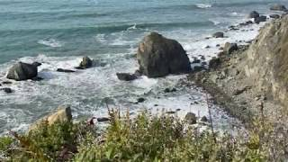 Recording Distant Waves with a Sony D100 near Redwoods National Park in California