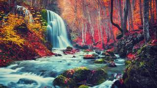 "Peaceful Relaxing Instrumetnal Music, Soft Meditation Music ""Autumn Rain"" by Tim Janis"