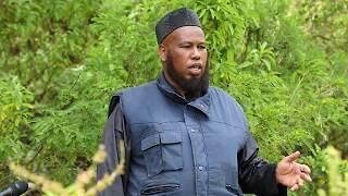 Documentary Al Huda Herbal Medicine Highest Mountains Full HD