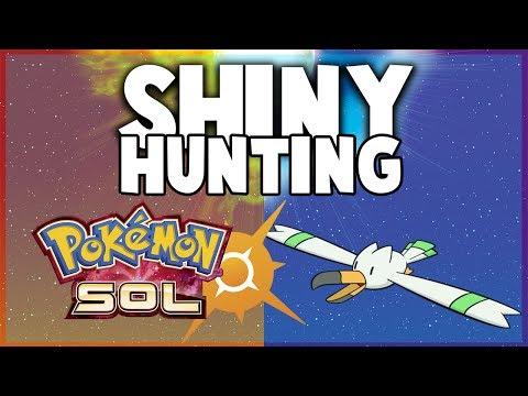 SHINY HUNTING con mi NOVIA | BUSCANDO AL SHINY | Wingull [Novox]