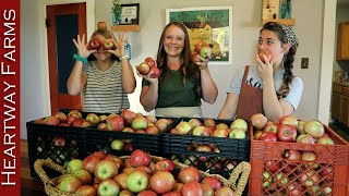 Four Ways to Pขt Up Apples | Heartway Farms | Stocking up for Winter | Fall Apple Harvest | Shortage