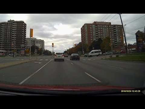 Steeles Ave West From Yonge St to Albion Rd in Toronto