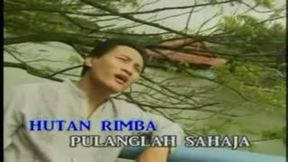 Sekuntum Bunga Sakura Di Gurun Sahara - Mega (HD/Karaoke/HiFiDualAudio)
