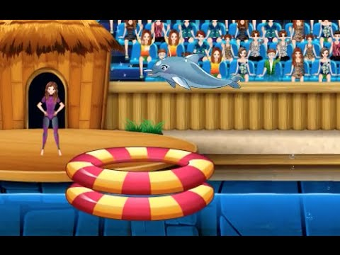 my dolphin show 1000