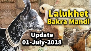 Download 103 | Bakra Mandi 2018/2019 Madrassa Mandi | Makhi