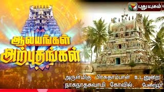 Naganathaswami Temple, Peraiyur | Aalayangal Arputhangal | 17/03/2016 | Puthuyugam TV