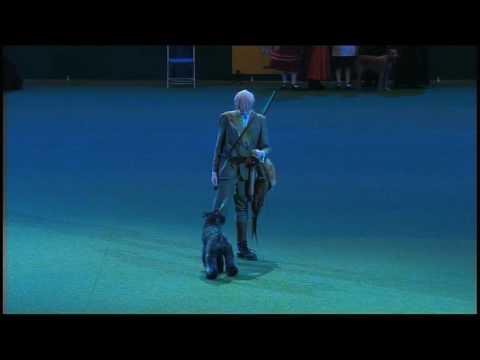 Vulnerable Breeds Parade 2008 - Kerry Blue Terrier