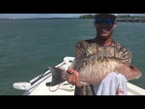 Fishing Report - October Ft Pierce Mangrove Snapper