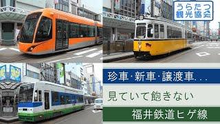 珍車、新車、譲渡車・・・見ていて飽きない福井鉄道「ヒゲ線」 Fukui railway