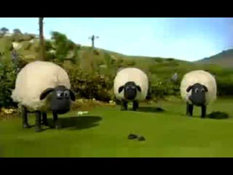 Lagu duda araban versi shaun the sheep