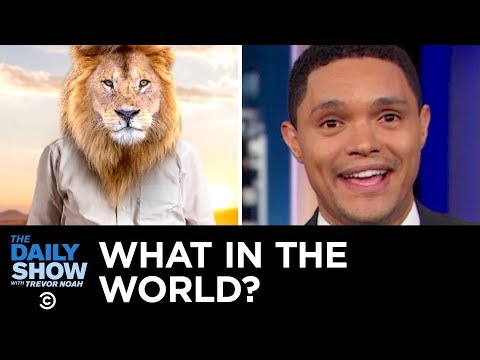 What in the World? | The Daily Show