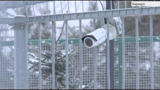 Телеканал «Катунь 24» установил веб-камеры в вольерах леопарда, африканских львов и амурских тигров