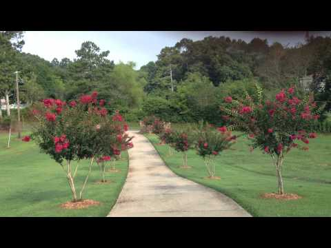 DEAN MILL~Homes For Sale In Canton, Cherokee County Georgia 30144