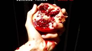 "Clinical Trials - ""Warpaint"" - clinicaltrialsmusic.com Thumbnail"