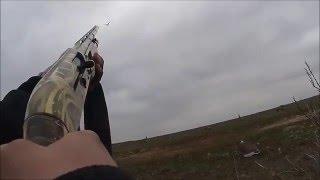Охота на гусей в России