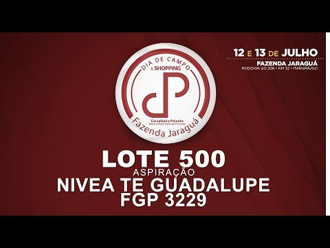LOTE 500